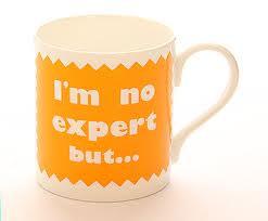 im-no-expert